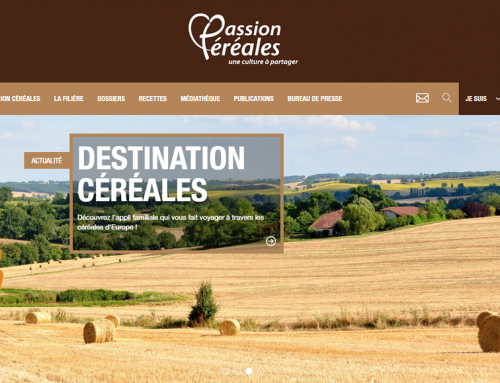 Passion Céréales: the challenge of translating cultural quizzes into English and Flemish