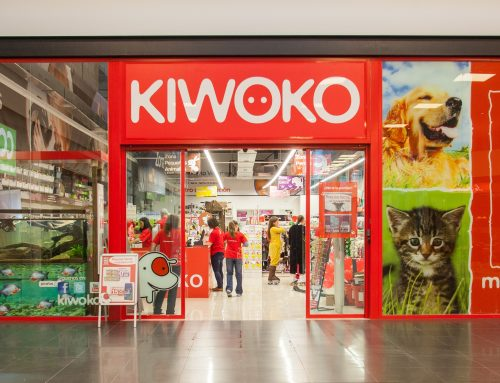 Kiwoko : traduction multilingue de documents commerciaux pour le leader espagnol du marché animal