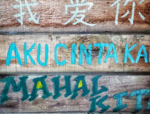 Los idiomas en Internet y en el mundo: un panorama de las prácticas actuales