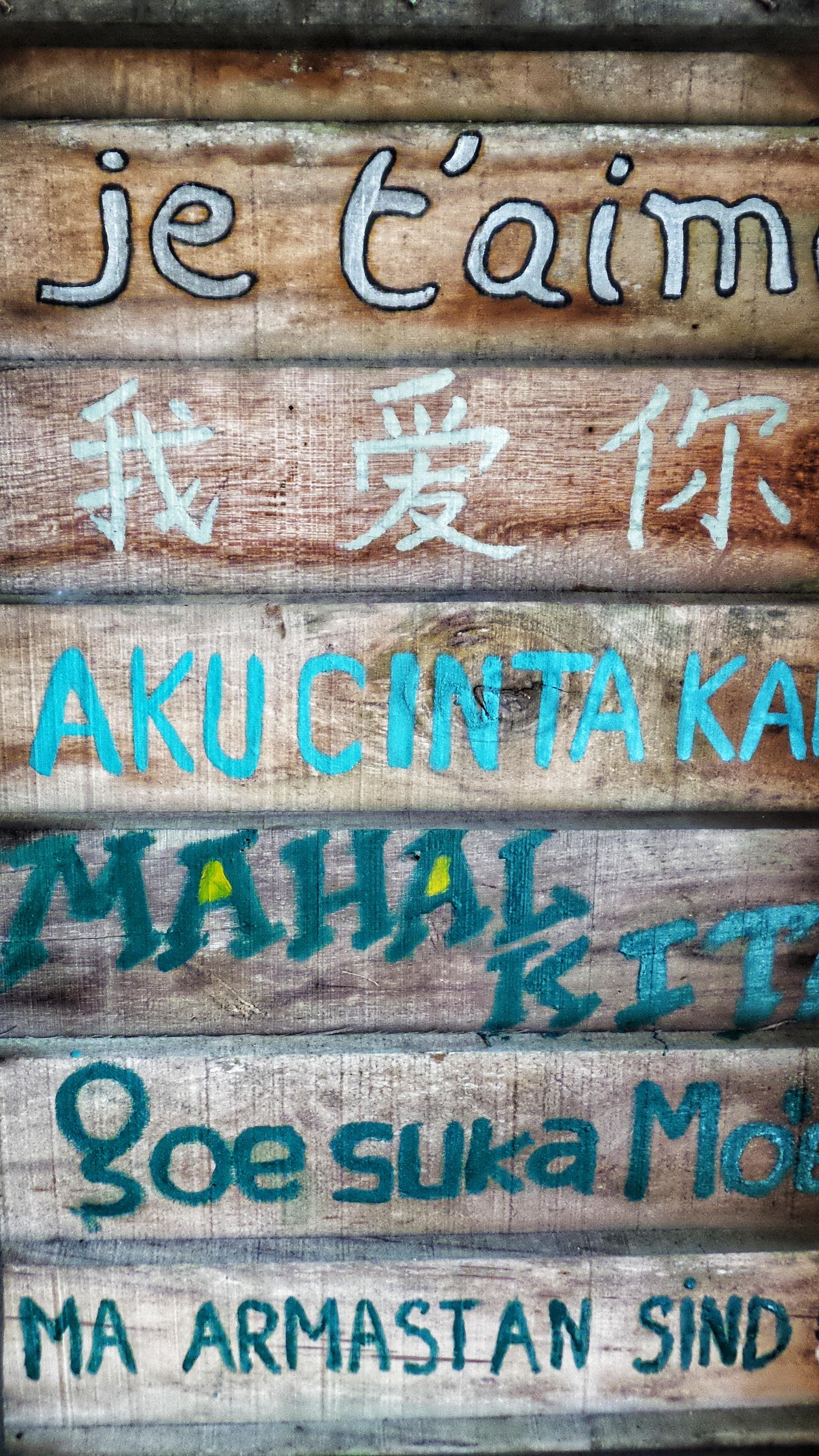 Diversité des langues sur internet et dans le monde